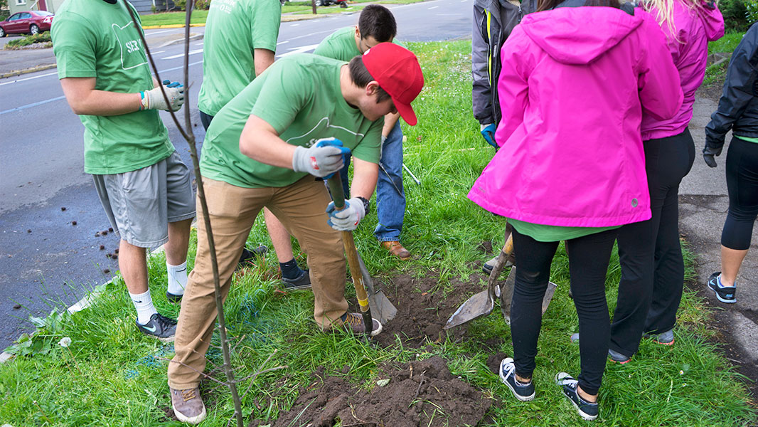 Students digging holes for planting trees.